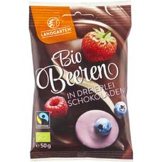 Fructe de padure bio liofilizate invelite in ciocolata